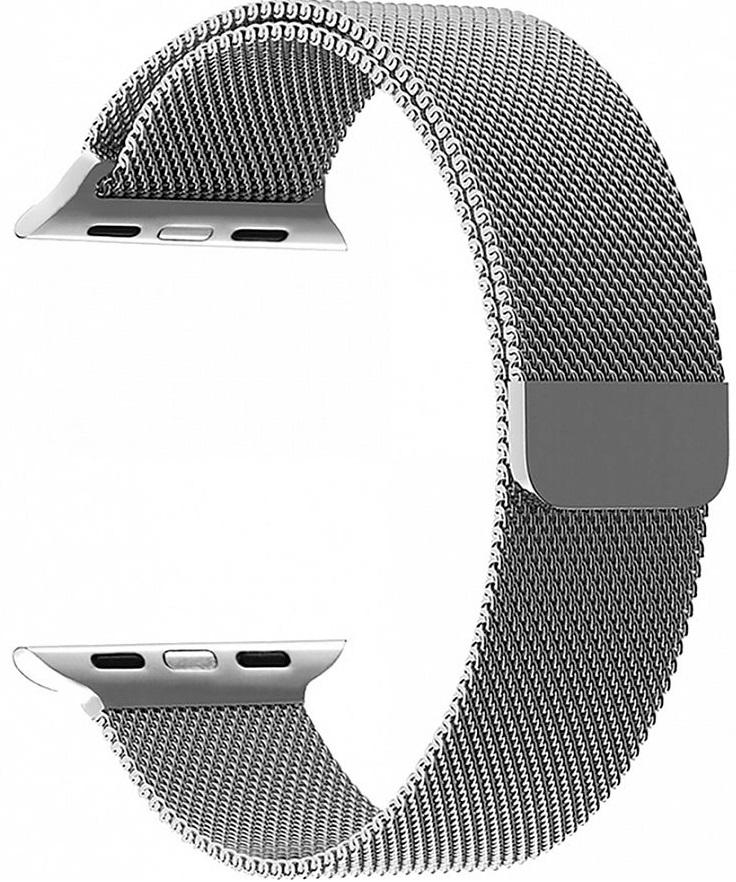 Ремешок Lyambda Capella для Apple Watch (DS-APM02-40-GR) (серебристый)